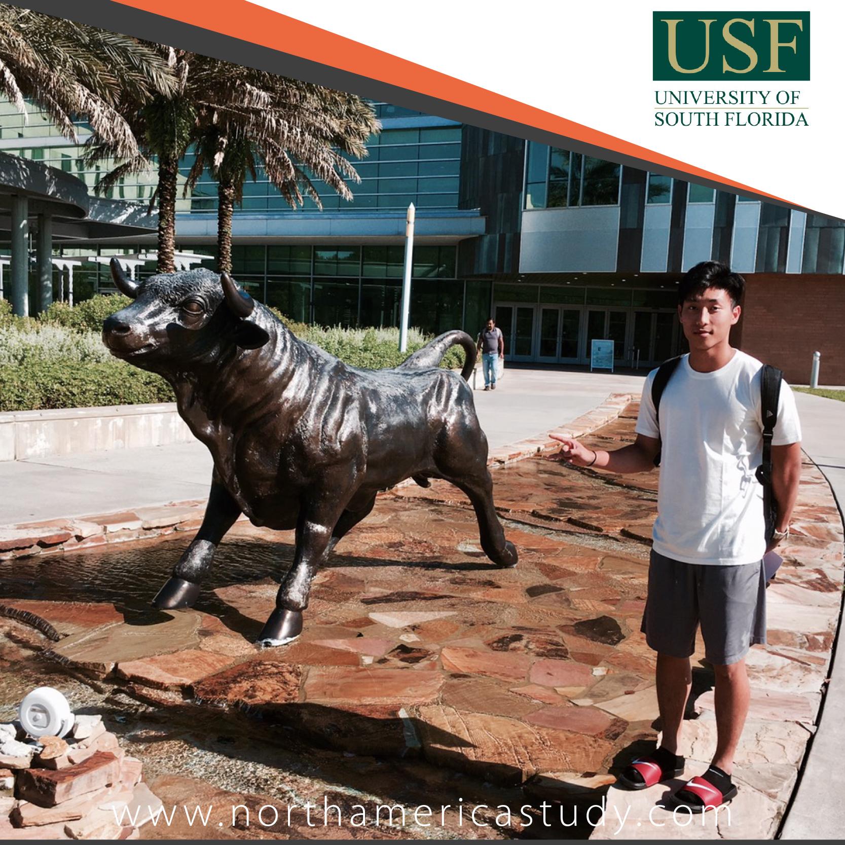 รีวิวจากน้องณัฐพรรษ เรียนที่ University of South Florida